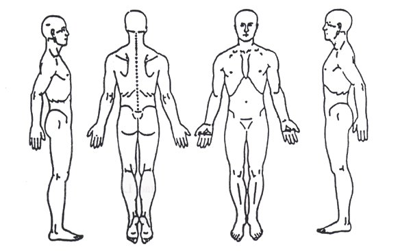 List Of Synonyms And Antonyms Of The Word Body Chart